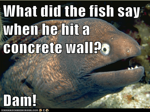 Bad Joke Eel,dam,fish,funeral,swears
