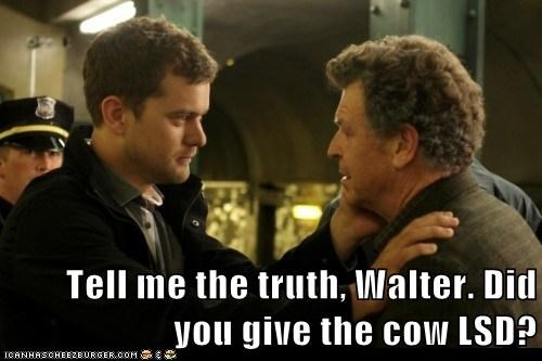 cow Fringe John Noble joshua jackson lsd peter bishop truth Walter Bishop - 5794309888