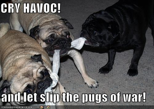 Cry Havoc And Let Slip The Pugs Of War Cheezburger Funny Memes