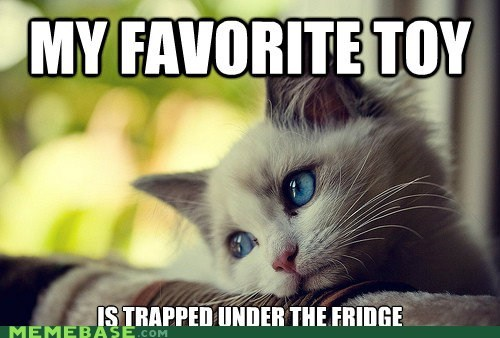 cat,First World Problems,fridge,toy