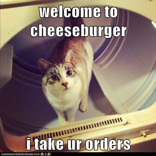 Cheezburger Image 5796513792