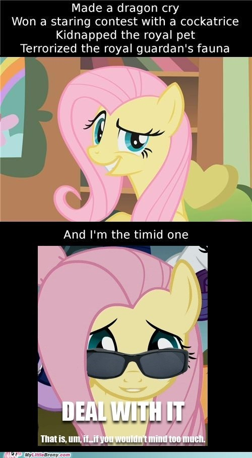 best of week Deal With It fluttershy if-you-dont-mind Like a Boss meme timid - 5797395456