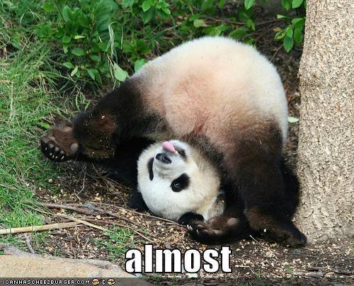 almost,flip,panda,roll