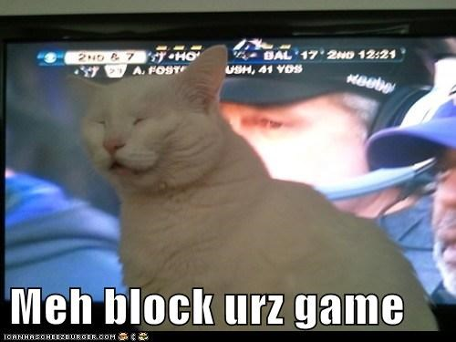 block,blocking,caption,captioned,cat,game,I,television,the Big Game,view