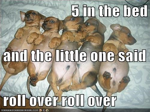 5 in the bed and the little one said roll over roll over
