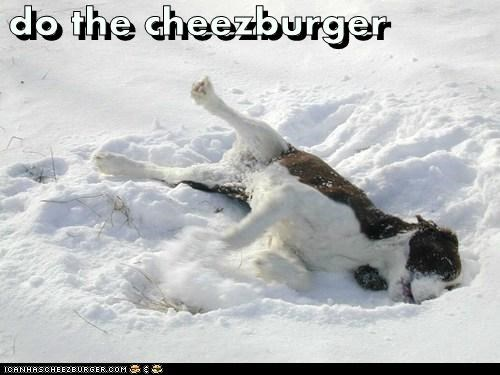 Cheezburger Image 5798658816