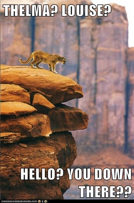 canyon caption captioned cliff mountain lion question shouting thelma and louise - 5798738176