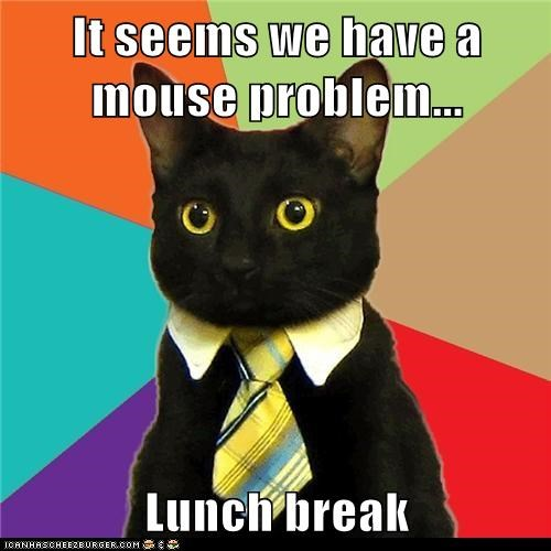 Business Cat,lunch break,mouse,problem