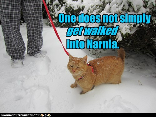 One does not simply into Narnia. get walked