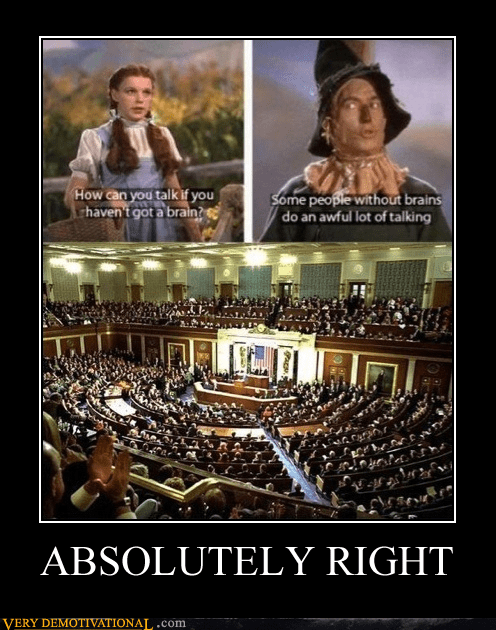 Congress,hilarious,no brain,scarecrow,wizard of oz