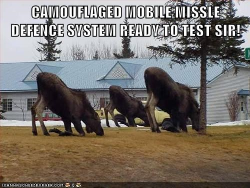 camouflage camouflaged caption captioned defense missile mobive moose ready system test