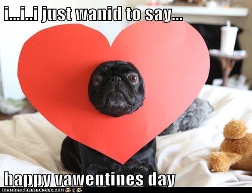 heart heart hat love pug valentines-day-pug - 5800400896