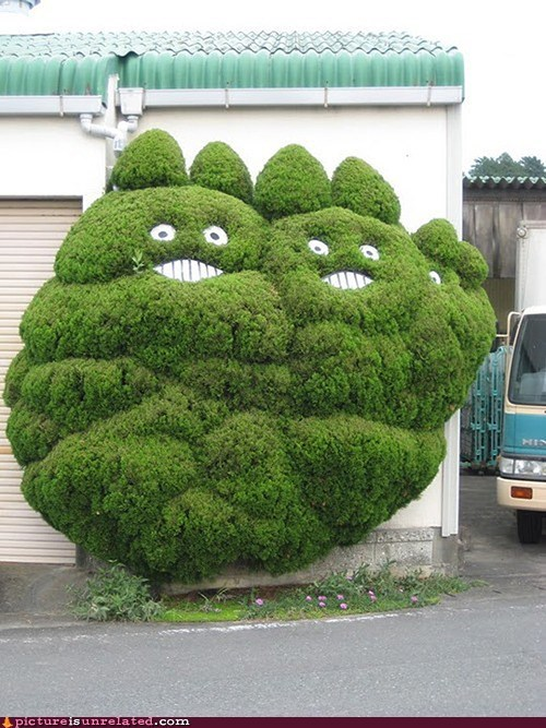gardener otaku shrub smiley face wtf - 5800577024