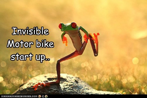 amphibian animals frog invisible invisible motor bike motor bike motorcycle