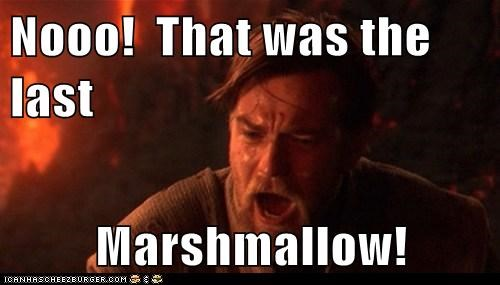 Nooo! That was the last Marshmallow!