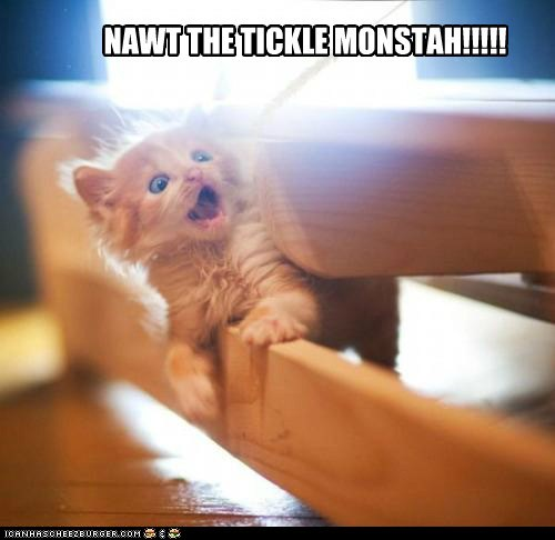 animals,cat,I Can Has Cheezburger,kitten,oh no,tickle,tickle monster,tickles