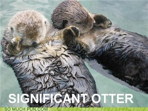 classic Hall of Fame literalism otter otters s-o significant other similar sounding Valentines day - 5801506560