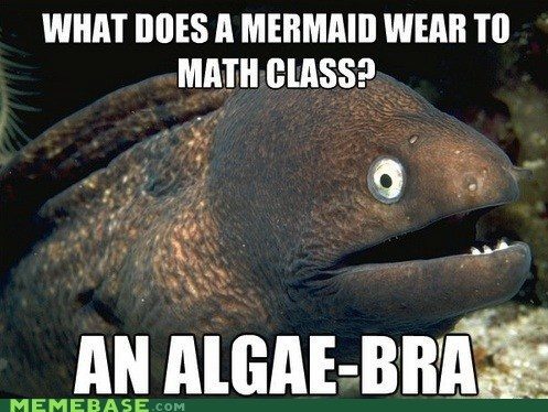 algebra Bad Joke Eel math mermaid secant - 5801980672
