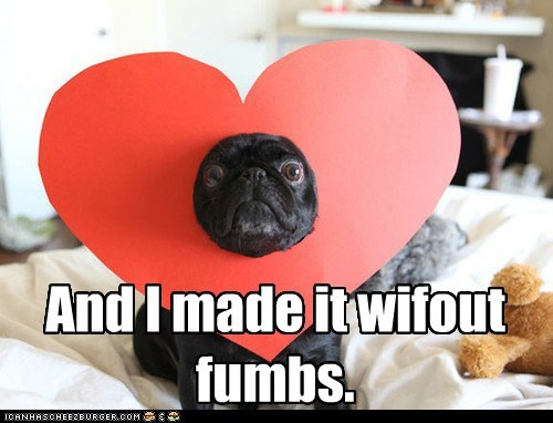 heart heart hat love pug valentines-day-pug - 5802567424