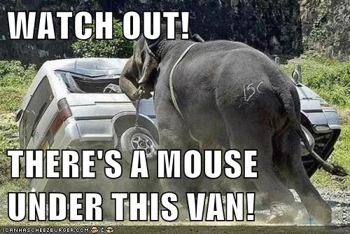 animals,elephant,ill-handle-this,ill-help-you,mouse,van,whoa