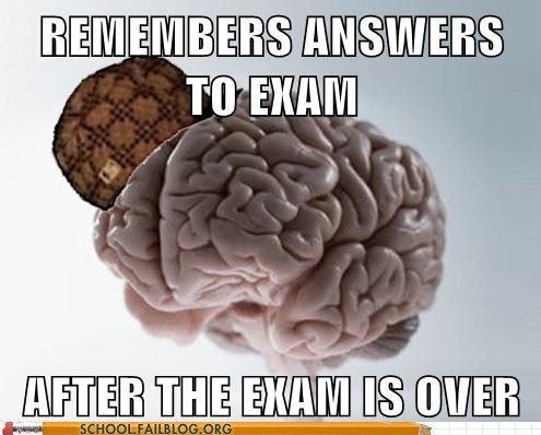 answers,brain,exam,memory,scumbag