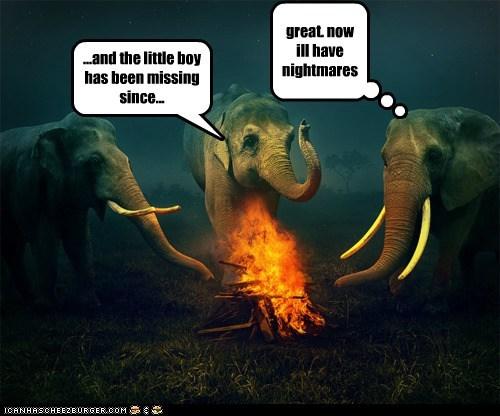 animals camping elephants fire nightmares - 5803314176