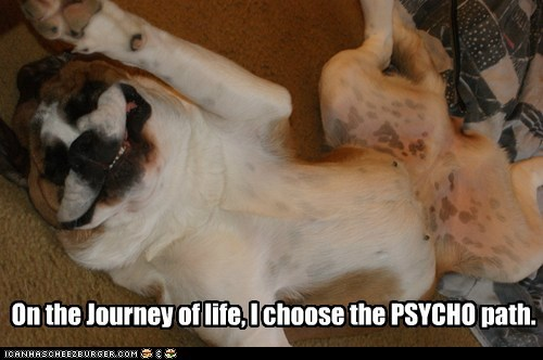 On the Journey of life, I choose the PSYCHO path.