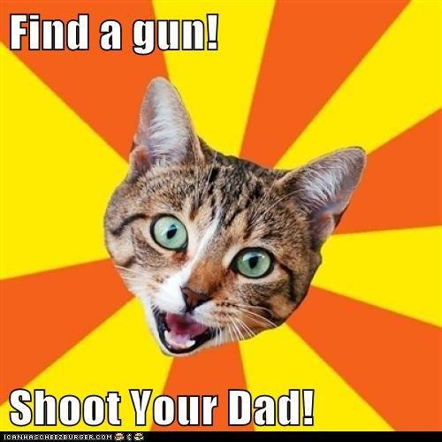 advice,bad advice,Bad Advice Cat,Cats,dad,guns,random,shoot,wtf