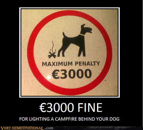 dogs,fire,hilarious,penalty,wtf