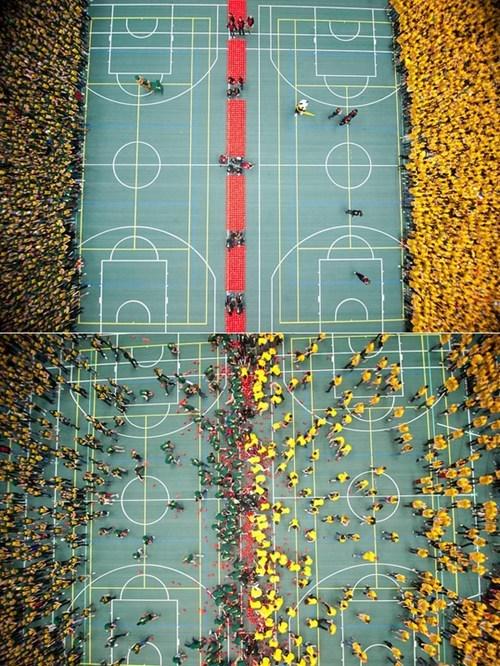 Largest Dodgeball Game University of Alberta world record - 5805099264