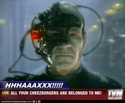 Cheezburger Image 5805187072