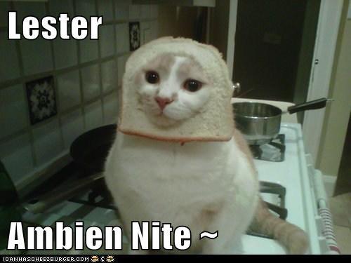 Cheezburger Image 5805412864