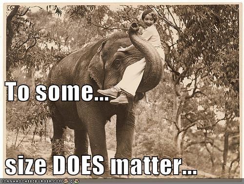 animals elephant size matters vintage - 5806108928