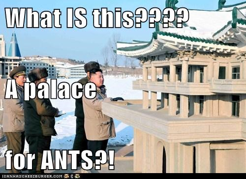 What IS this???? A palace for ANTS?!