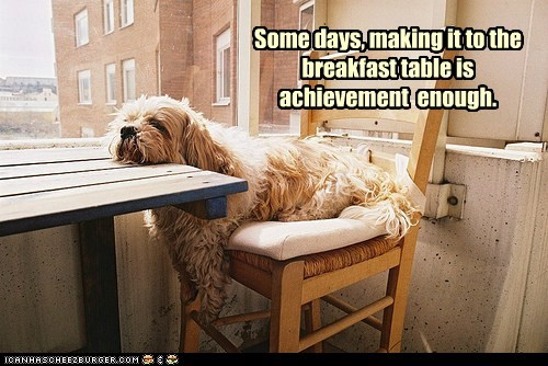 Some days, making it to the breakfast table is achievement enough.