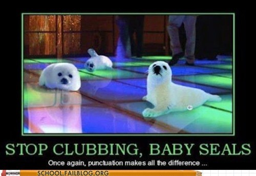 baby seals,clubbing,comma,grammar,seals