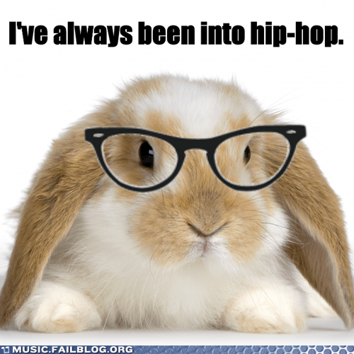 bunny hip hop hipster hop hopping rabbit - 5806510848