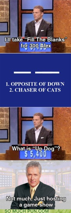 Alex Trebek answer dogs fill in the blanks groan-inducing Hall of Fame Jeopardy question troll trollface trolling up whats-up-dog