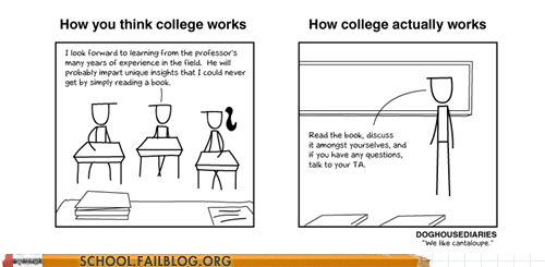 college comic professor reality vs expectations university