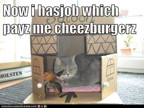 Cheezburger Image 5808254976