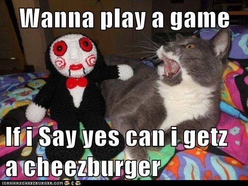 Cheezburger Image 5808874752