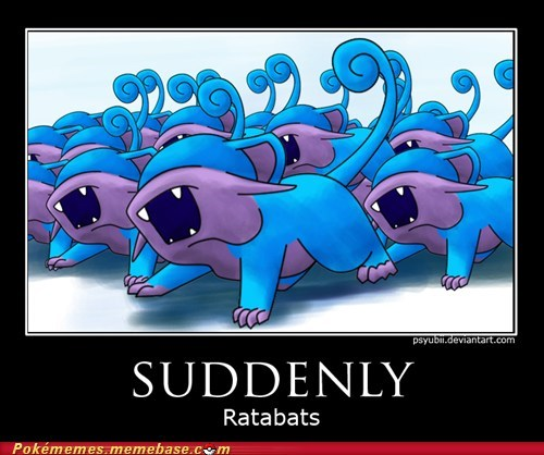 best of week,fusion,Memes,ratabats,rattata,suddenly,zubats