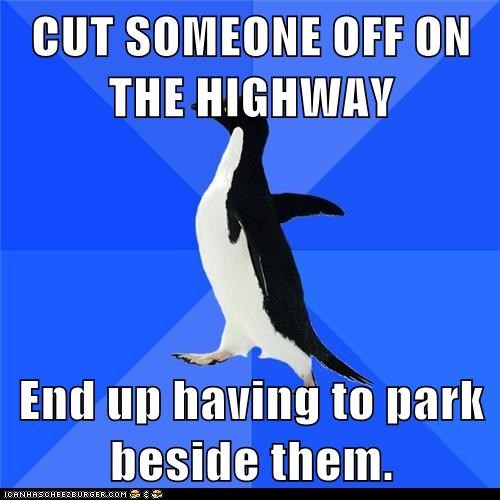 Awkward,beside,cars,cut off,driving,park,penguins,socially awkward penguin