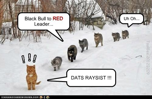 Black Bull to RED Leader... RED DATS RAYSIST !!! ! ! ! ToolBee 20120209 Uh Oh...