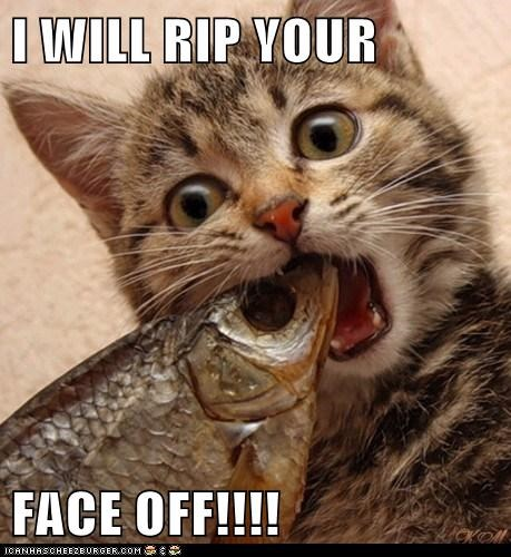 Image result for rip your face off pictures