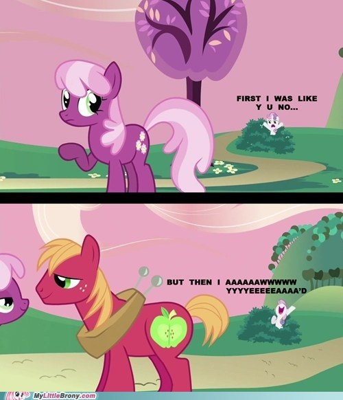 awwww yeah hearts and hooves day i really like your mane meme Sweetie Belle - 5810696448