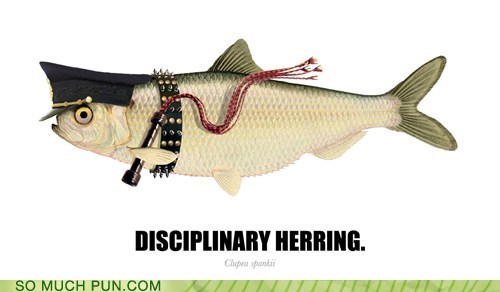 disciplinary,double meaning,Hall of Fame,hearing,herring,literalism,lolwut,misinterpretation,similar sounding