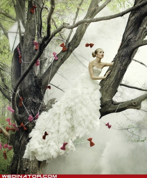 Awkward,bride,funny wedding photos,kite,tree
