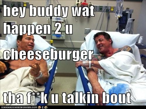 Cheezburger Image 5812417280