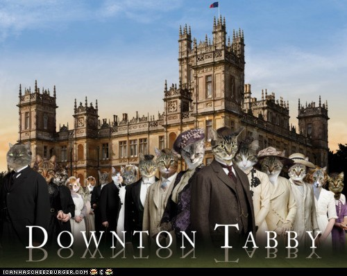 best of the week,British,cute,downton abbey,downton tabby,photoshopped,puns,tabby,TV,win